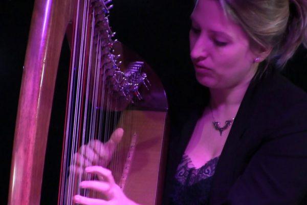 The Living Mountain (Harp & String Quartet)